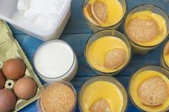 Custard. Vanilla custard with, biscuits, milk sugar  and eggs Royalty Free Stock Image