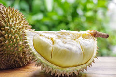Custardy pale yellow flesh inside spiky husk of durian the popul Royalty Free Stock Photos