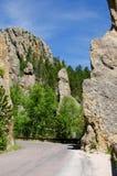 Custer Stan Park, Czarny Wzgórza, Południowy Dakota, USA zdjęcia royalty free