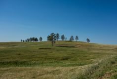 Custer stanu park, Custer, SD zdjęcie royalty free