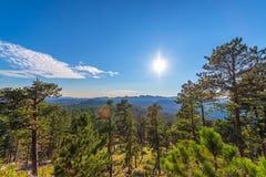 Custer stanu parka krajobraz zdjęcie royalty free