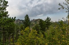 Custer State Park Royalty Free Stock Image