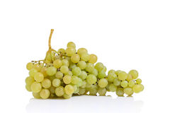 Custer of white grape Stock Images