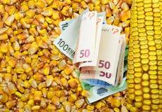 Custo do milho em euro- notas de banco Fotos de Stock