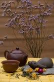 Custode del tè immagini stock