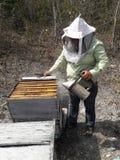 Custodi dell'ape in penisola dell'Yucatan Immagini Stock