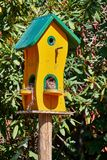Custom made cute bird house painted in yellow and green in front of a hedge on a pole made of wood with multiple entrances.  stock photos