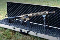 Custom Painted Semi-Auto Tactical Rifle Royalty Free Stock Photos