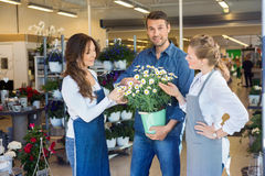 Customer Being Assisted By Salesgirls In Buying Royalty Free Stock Photography