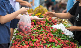 Customer buying fruit at fruit market. Customer is buying fruit & x28;lychee& x29; at the fruit market / festival Royalty Free Stock Image
