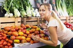 Customer choosing fresh ripe tomatoes Royalty Free Stock Photos