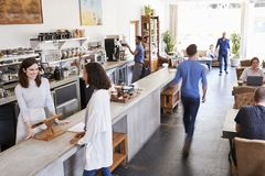 Customer at a counter of a busy coffee shop, elevated view royalty free stock images