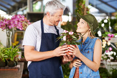 Customer and employee in nursery Royalty Free Stock Images