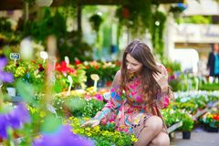 Customer selecting flowers in Parisian shop Royalty Free Stock Photo