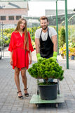 Customer service and delivery in the flowers shop. Handsome flower seller helping female buyer to take out a tree with trolley from the plant store. Customer Royalty Free Stock Photos