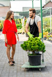 Customer service and delivery in the flowers shop. Handsome flower seller helping female buyer to take out a tree with trolley from the plant store. Customer Royalty Free Stock Photo