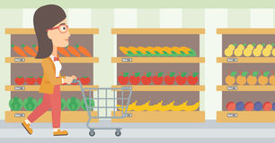 Customer with trolley. Royalty Free Stock Image