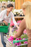 Customer woman shopping for flowers garden center Stock Image