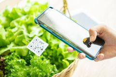 Free Customers Buy Organic Vegetables From Hydroponics Farm And Pay Using QR Code Scanning System Payment At Food Market Shop. Royalty Free Stock Image - 158991246