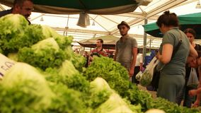 Customers buying lettuce from seller at the biggest and most crowded bazaar in the city. Located in Bostanli, K. IZMIR - JULY 2015: Customers buying lettuce from stock video footage