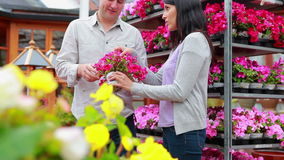 Customers standing next to a flower shelf stock footage