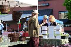 Customers talk with farmer at plant starts booth at farmers marke Royalty Free Stock Photography