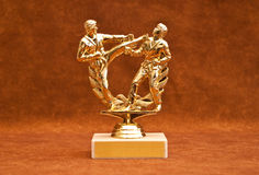 Customizable Competition Trophy. Martial Arts Competition Trophy with Customizable Label royalty free stock images