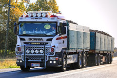 Customized Scania Transport Truck Hauls Sugar Beet Royalty Free Stock Photography