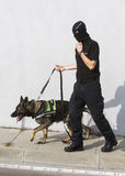 Customs drugs detection dog Royalty Free Stock Photography