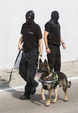 Customs drugs detection dog Royalty Free Stock Images