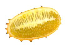 Cut African horned melon Royalty Free Stock Image