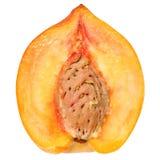 Cut apricot close up Royalty Free Stock Photos