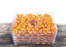 Cut apricots on dehydrator tray,fruit dryer Stock Photos