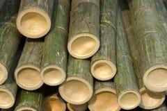 Cut Bambo. Detail of cut bamboo Royalty Free Stock Photo