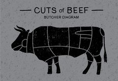 Cut of beef. Meat cuts - Cow. Poster Butcher diagram and scheme: brisket, shank, rib, plate, flank, sirloin, shortloin, rump, round, shank in vintage style royalty free illustration
