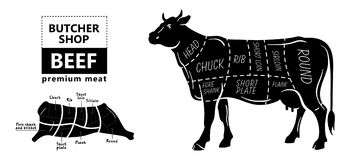 Cut of beef set. Poster Butcher diagram - Cow. Vintage typographic hand-drawn. Stock Illustration
