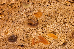 Cut bread with raisin and dried apricots Stock Photos