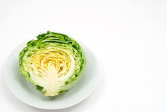Cut cabbage Royalty Free Stock Photo