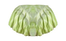 Cut cabbage on white stock photography