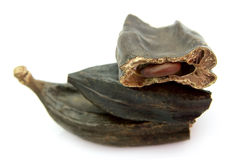 Cut carob pods Royalty Free Stock Images