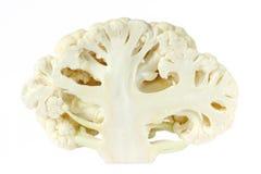 Cut cauliflower isolated Stock Image