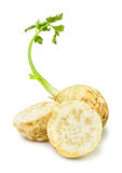 Cut celery root. On white background Royalty Free Stock Photos