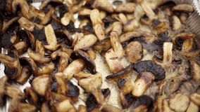 Cut champignons are fried in oil. stock footage
