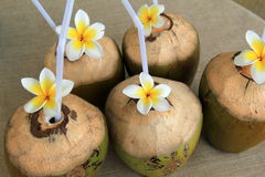 Cut coconuts with pretty flowers for decoration Stock Photo