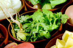 Cut coriander leaves and roots. Stock Image