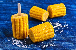 Cut corn on the cob on a stick. Surrounded by white crystals Stock Photography