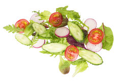 Cut cucumbers, garden radish, tomatoes and lettuce Stock Photos