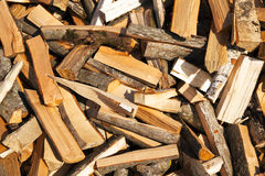 The cut-down firewood stock photo