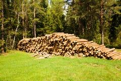 Cut-down Trees Stock Photos