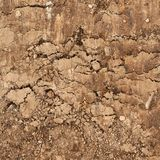 Cut of the earth soil Royalty Free Stock Photos